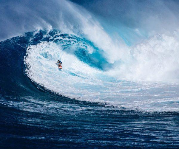 Surfs Up !!